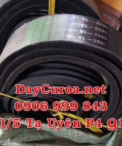 Dây curoa Alpha Power Belt 5V-4L-2890-2