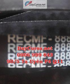 Dây curoa Mitsuba RECMF-8880