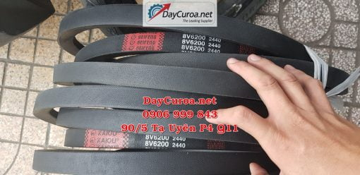 Dây curoa Mitsusumi Sanlux 8V62002440-4
